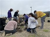 Students from Eco Club and Girls Club plant a Survivor Tree in front of the Northeast Magnet High School. Survivor Tree was given by the Bel Aire Tree Board.