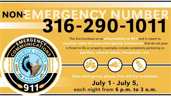 Non-emergency number to use for parties, excess noise, fireworks is 316-290-1011.